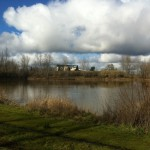 The Pond at Alton Baker Park - January 2011 - Autzen Stadium in the background.