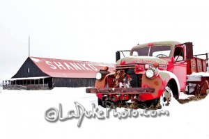 Shaniko, Oregon - Fire Truck