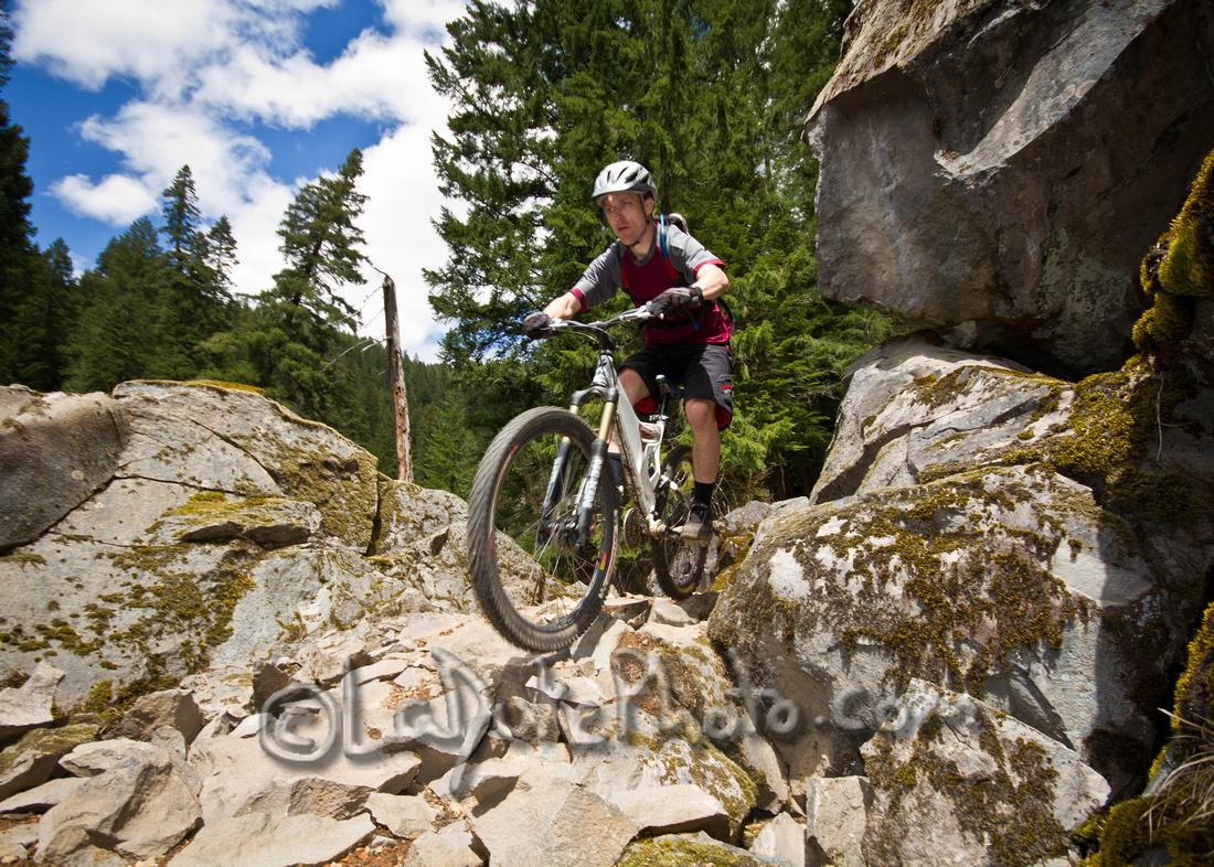 Umpqua River Trail North Umpqua Trail – Dread And