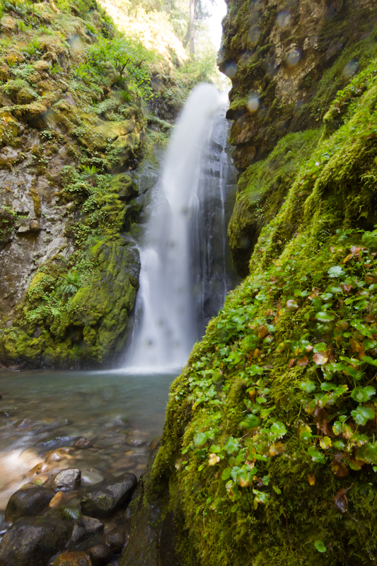 Pinard Falls Hiking And Photography Eugene Outdoors