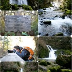 Sweet Creek Falls – Mapleton, Oregon